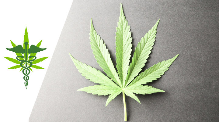 marijuana_card_doctor_orlando