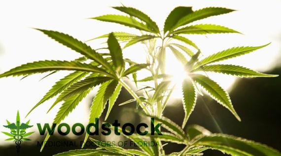 medical_marijuana_doctor_orlando_fl